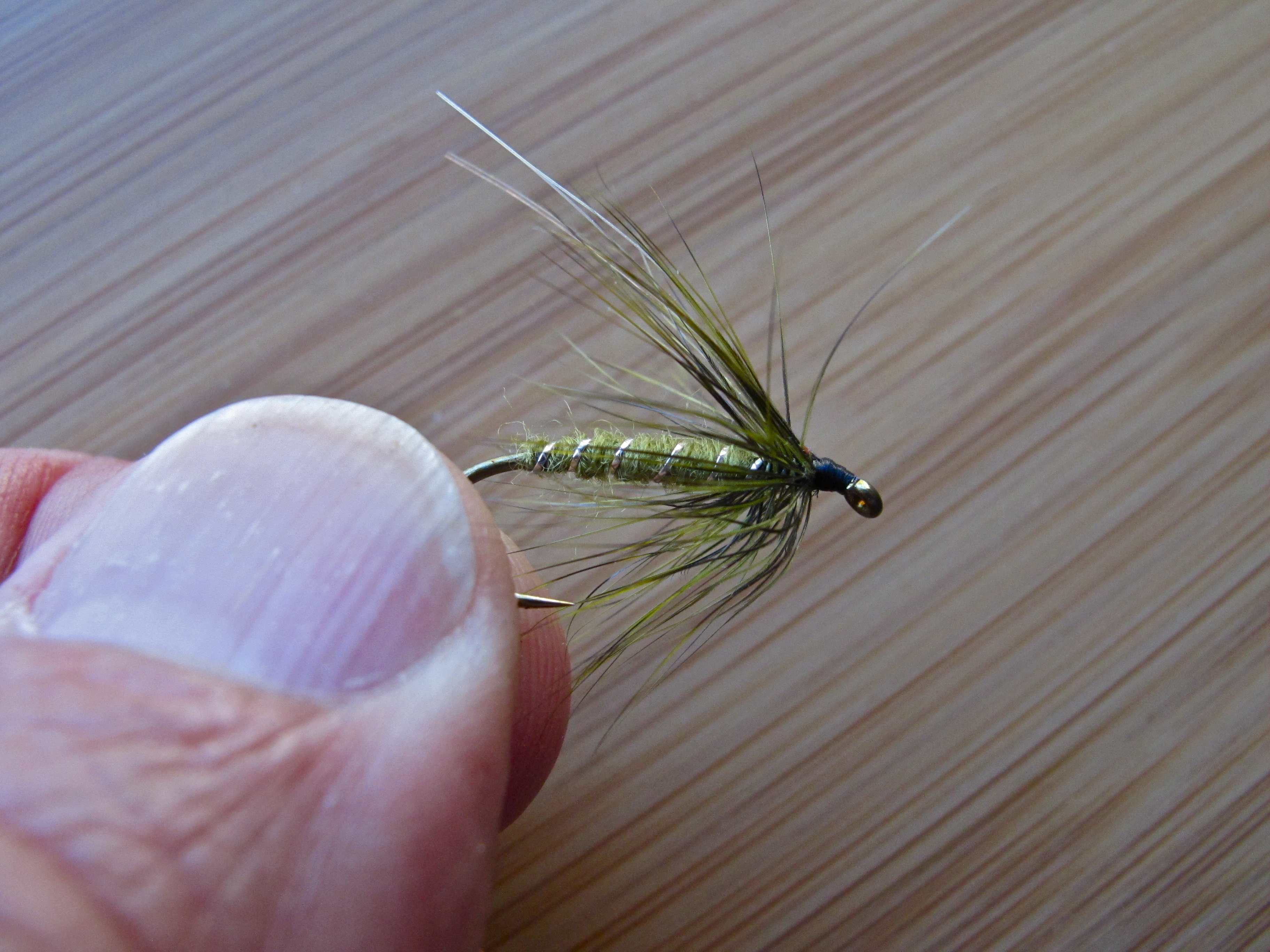 Jay s thoughts on sea run cutthroat fly patterns for Is a fish wet