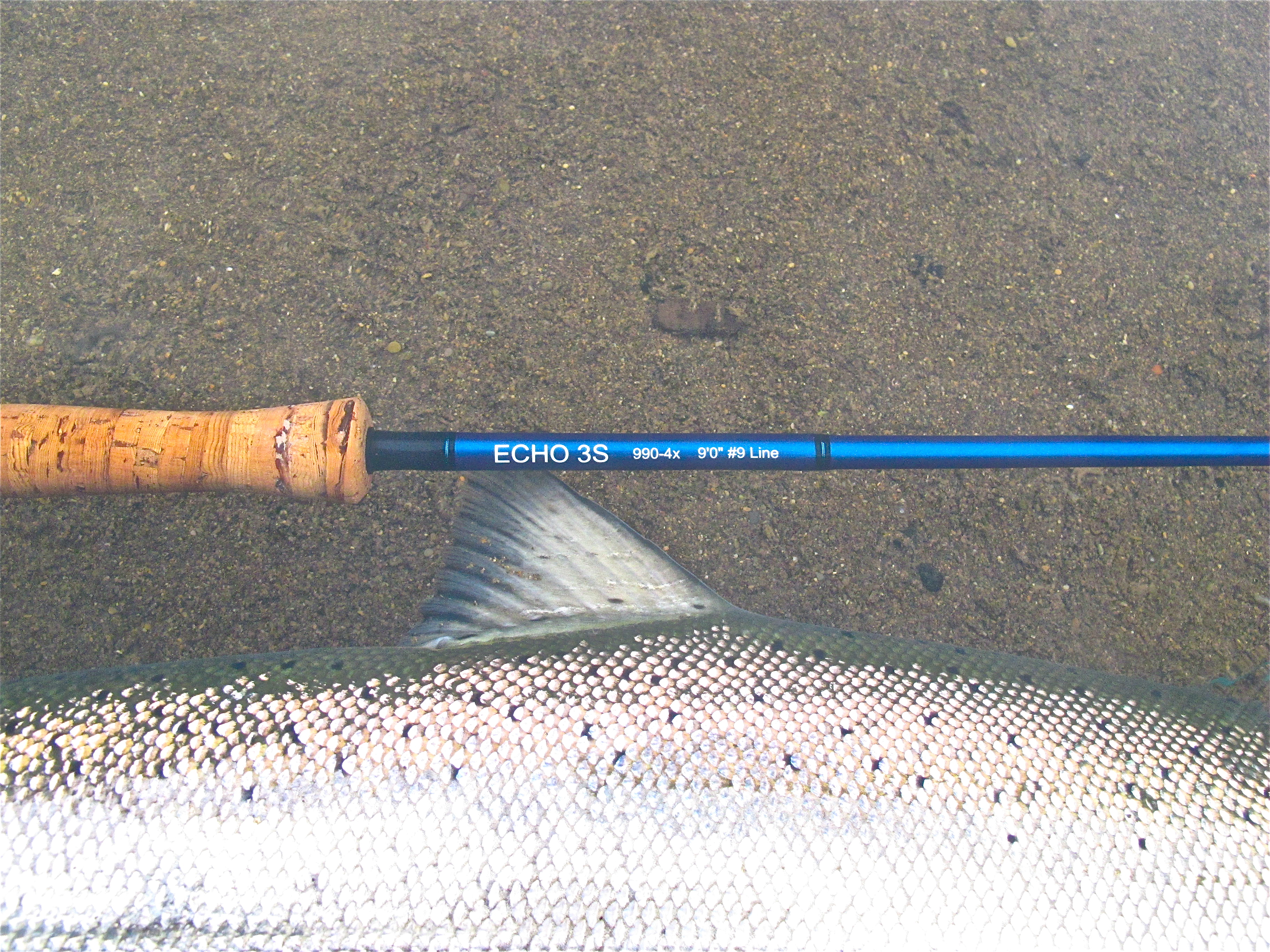 The mother of all echo fly rod reviews january 2012 for Shadow fly fishing