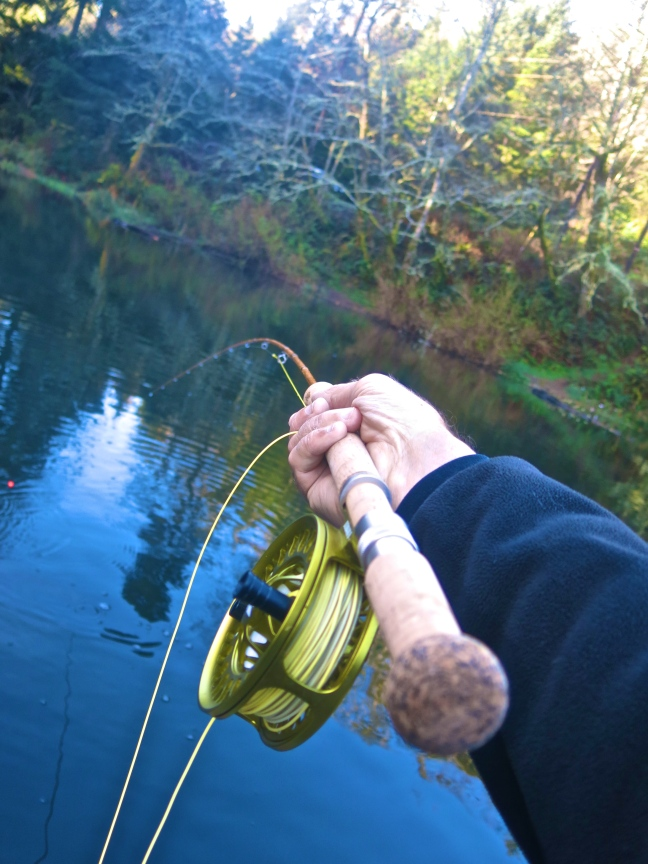 Echo Glass Switch rod with trout pulling on fishing line.