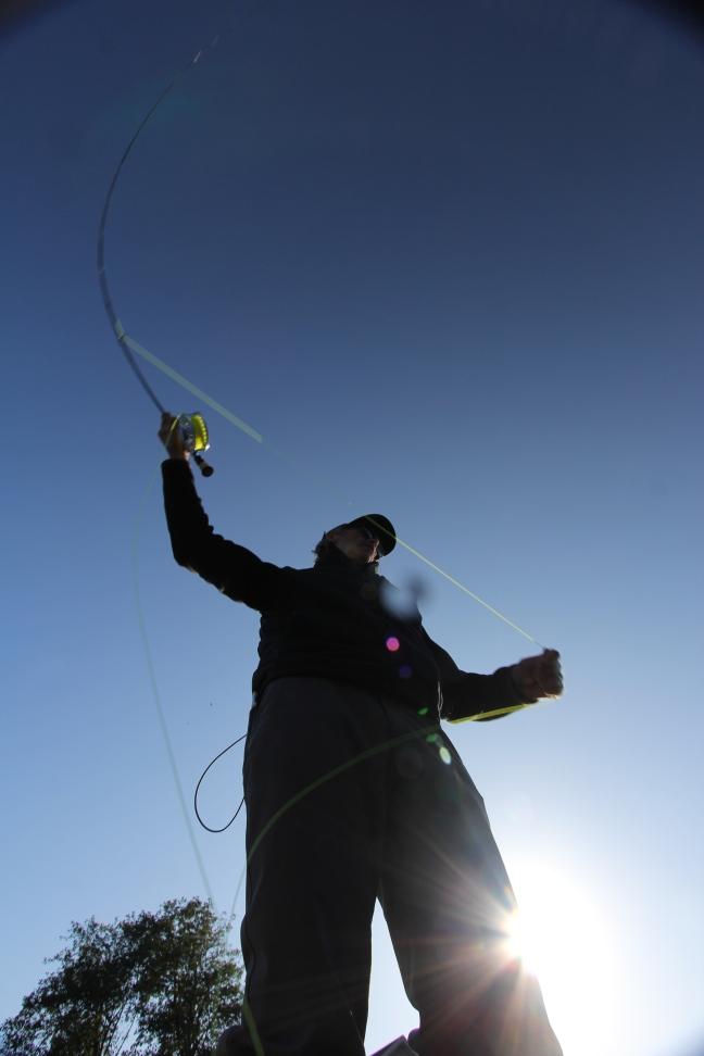 Jay Nicholas Salmon fishing 2015