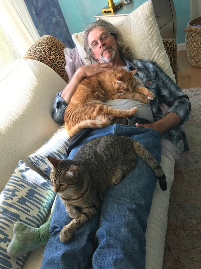 Jay Nicholas with cats